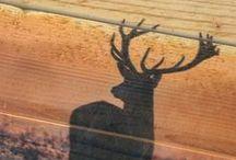 Foto op hout opties | Photo on wood options
