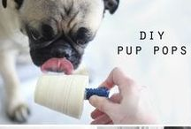 Doggie Treats / The New Barker favorite doggie treats!