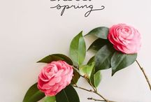 Springspiration / Let your ideas blossom like flowers on Spring!