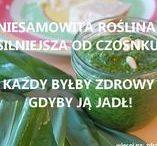 ZIOŁA, HERBS, more: zdrowie.hotto.pl / Zioła popularne i skuteczne na zdrowie, urodę i w kuchni. Herbs. Więcej na zdrowie.hotto.pl
