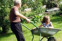 Gardening / by Outdoor Families Magazine