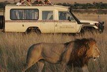 Africa is Amazing