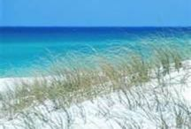 ALABAMA, ORANGE BEACH,GULF SORES / our home away from home in the winter months / by Karen Schulz
