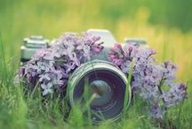 Cameras & Photography / Cameras ideal for taking the best quality photographs. With a little splash of camera art too.