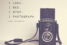 Photographic flare //