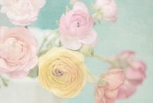 Pastels wedding ideas