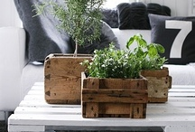 home crates + pallets 箱 ♥ / by Chyna Bel 佳 ♥