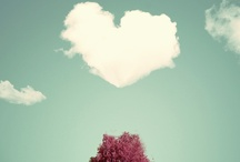 hearts 心 ♥ / by Chyna Bel 佳 ♥