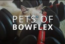 #PetsOfBowflex