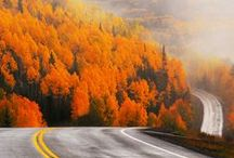 Colorado / by Zac Henderson