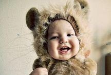 My Teddy Bear Collection tooooo gorgeous!