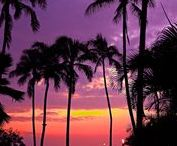 Hawaii Sunsets