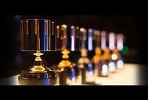 Awards / Honors / Entertainment Industry Awards and Honors
