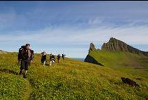 Hornstrandir / Hornstrandir is Iceland's most remote corner.  It's also where we spend considerable time every summer.