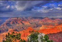 Grand Canyon National Park / by LauraH