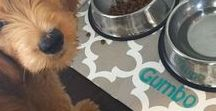 PERSONALIZED PET PLACEMATS / Personalized Pet Placemat | Custom Pet Placemat | Custom Pet Mat | Custom Dog Mat | Cat Placemat | Dog Food + Water Bowl Mat | Personalized Puppy Dog Gifts by Three Spoiled Dogs