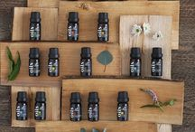 ESSENTIAL OILS / essential oils for humans and dogs