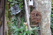 Le buone idee degli altri / Inspiring ideas for garden