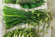 Greens & Lettuces