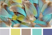 Color palettes / Color themes for photography