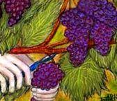Kezek / Kezek összefonódva, kéz a kézben, valamit fogó -tartó kéz
