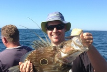 New South Wales Fishing Charters