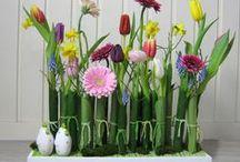 bloemschikken voorjaar / Ideeën voor voorjaarsschikkingen