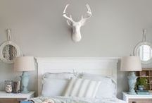 Bedroom - Wall Charmers Faux Taxidermy