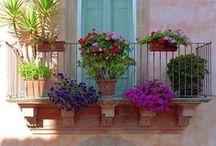 balconies / balconıes only