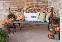 Autumn / Decorating for Autumn is the most wonderful time of the year. (Yes Christmas... I just stole your most wonderful song lyric.) Oranges, reds, browns, and the occasional hint of green, Oh my! Take down those bright summer hats, and flip flop decorations. Now it's time for the pumpkins, gourds, and fallen leafs!