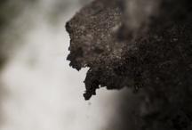 Black Snow / Blackside of snow