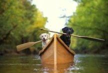 Grand Paddle Sports! / Paddling!