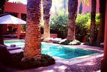 Lara Ventura Pool Dreams