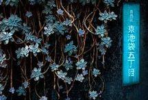 Autumnal Florals / Moody florals
