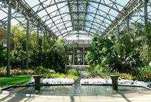 Architecture_Greenhouse