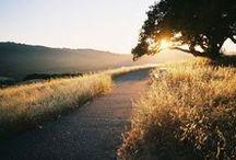 Landscape_Road, path etc