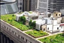 Rooftop around the world / Giardini pensili: la soluzione per chi aspira a godere del verde, la soluzione per chi non si accontenta del grigio.