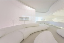 interior - livingroom  - modern space