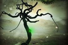 The Treemakers / Everything Treemakers