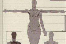 F Anatomy / Female Anatomy