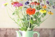 ·floral·