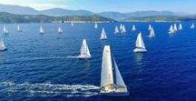 Catamarans Cup 2016