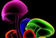 Choreographic Color! / In Living Color! Rainbow and Neon arrayed colors!