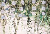 Wedding Detail / www.atdusk.com.au #meribee #meribeeweddings #summerlees #summerleeswedding #bowral #bowralweddings #southernhighlands #southernhighlandsweddings #theboathouse #theboathousewedding #palmbeachweddings  #sydneyweddingphotography #sydneyweddingphotographer #sydneywedding #byronbayvenues #byronbayphotographer #spell #graceloveslace #hellomay #weddingphotographer #weddinginspiration #byronbaywedding #weddingdecor #weddingflowers #destinationwedding  #weddingceremonyideas #nature