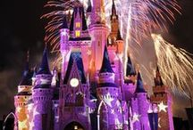 Disney Trip Tips / The best advice from across the web on how to plan, survive, and enjoy your family trip to Disney including Walt Disney World, Disneyland, Disney cruises and all things Disney from Disney packing lists to itineraries to the best Disney tips.