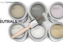Paint and Color Design Themes / Putting color in your home with paint and fabric.  Ideas on colors to use in your home