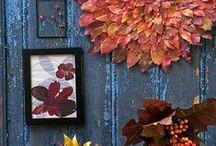 Seasons ✿ Herfst