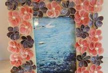 Sea Shell - Conchas de mar / Conchas de mar / by Pallets - Reciclaje