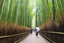 Asia Travel / Tips and travel guides for family travel to Asia including Japan, China, Singapore, Thailand, Indonesia, India, Sri Lanka and more.