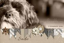 Pets Scrapbooking Ideas